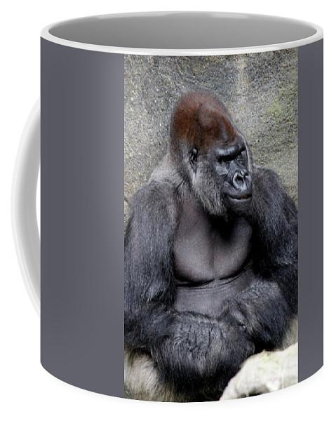 Gorilla Coffee Mug featuring the photograph Silverback Smile by Rosanne Jordan