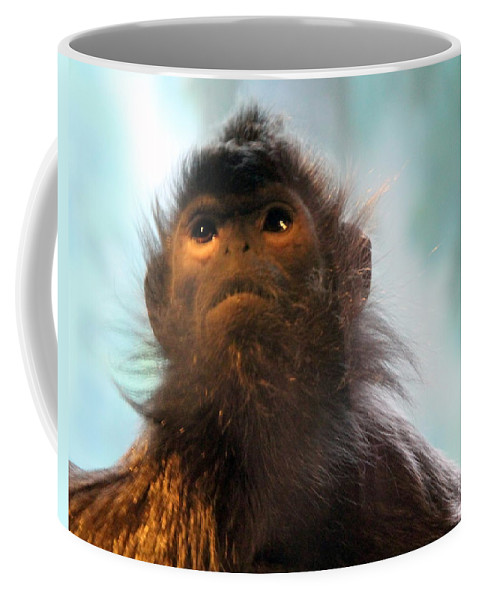 Silvered Langur Coffee Mug featuring the photograph Silvered Langur by Laurel Talabere