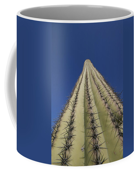 Plants Coffee Mug featuring the photograph Skyward View Of A Saguaro Cactus by John Burcham