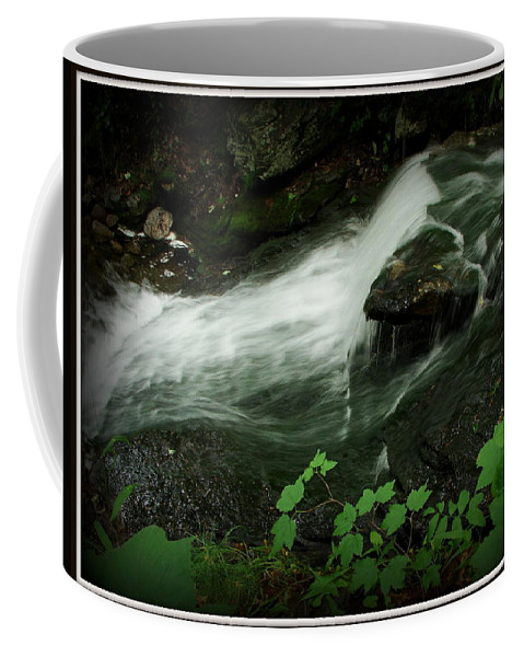 Waterfall Coffee Mug featuring the photograph Slide by Priscilla Richardson