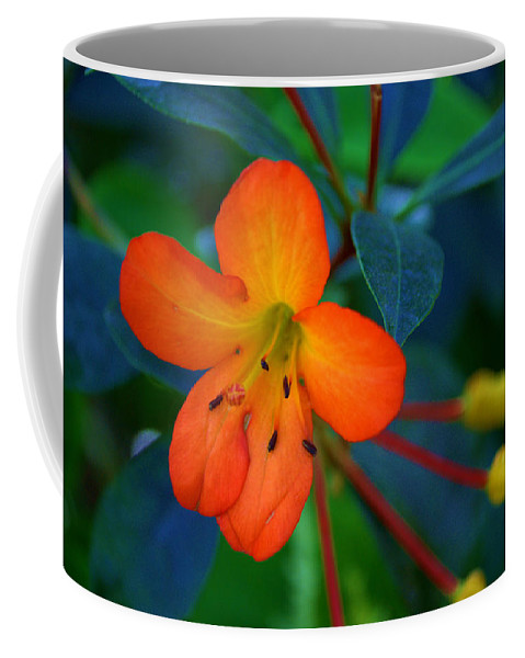 Plant Coffee Mug featuring the photograph Small Orange Flower by Tikvah's Hope