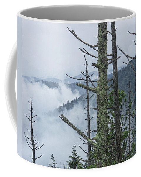 Art Coffee Mug featuring the photograph Smokey Mountain Forest No.612 by Randall Nyhof