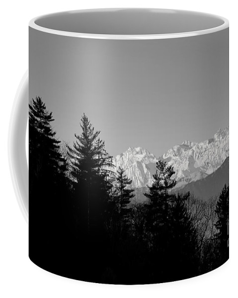 Trees Coffee Mug featuring the photograph Snow-capped Mountain And Trees by Mats Silvan