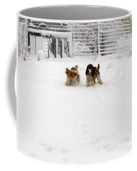 Animals Coffee Mug featuring the photograph Snow Day Play II by Debbie Portwood