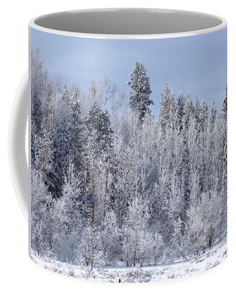 Winter Coffee Mug featuring the photograph Snows Hit Again In Early Spring by DeeLon Merritt