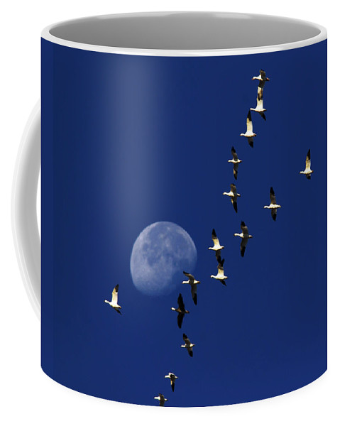 Dawn Coffee Mug featuring the photograph Snowy Moon by Tony Beck