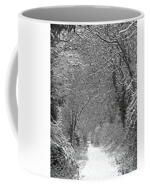Snow Coffee Mug featuring the photograph Snowy Path by Linsey Williams