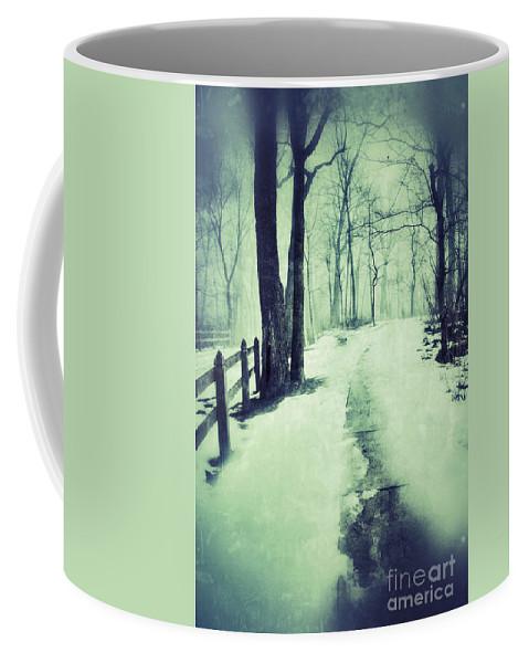 Rural Coffee Mug featuring the photograph Snowy Wooded Path by Jill Battaglia