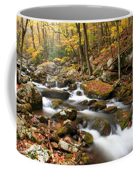 Autumn Coffee Mug featuring the photograph Softly Flowing by Darren Fisher