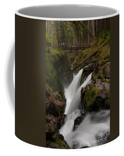 Olympic National Park Coffee Mug featuring the photograph Sol Duc Flow by Mike Reid