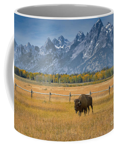 Grand Teton Coffee Mug featuring the photograph Solitary Moments by Sandra Bronstein