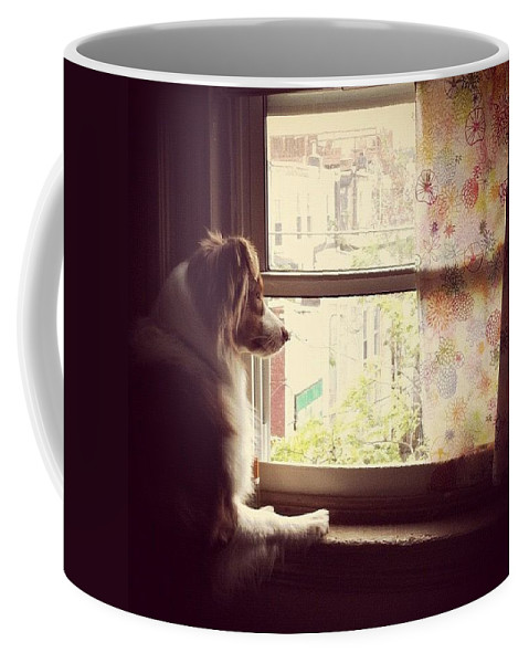 Coffee Mug featuring the photograph Somewhere In The Distance...a Puppy by Katie Cupcakes