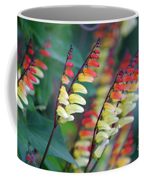 Spanish Flag Coffee Mug featuring the photograph Spanish Flag by Living Color Photography Lorraine Lynch