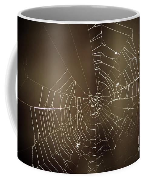 Yhun Suarez Coffee Mug featuring the photograph Spider Web 1.0 by Yhun Suarez