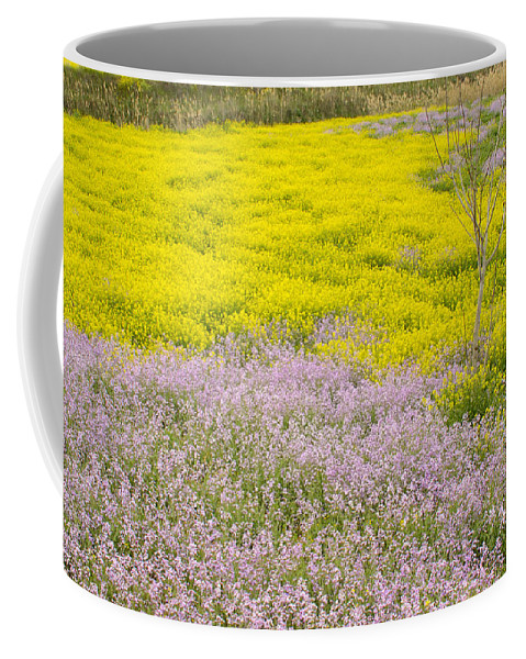 Flower Coffee Mug featuring the photograph Spring In Spain by Guido Montanes Castillo