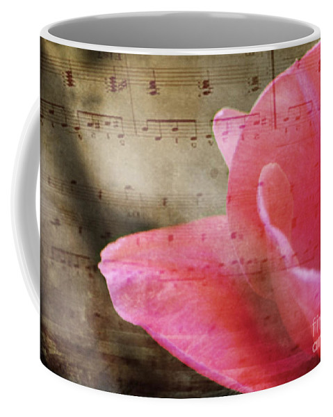 Music Coffee Mug featuring the photograph Spring Sings by Traci Cottingham