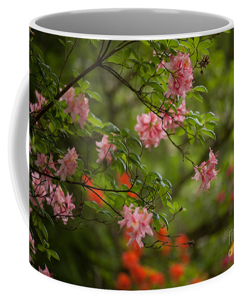 Rhodies Coffee Mug featuring the photograph Sprinkled Amongst by Mike Reid