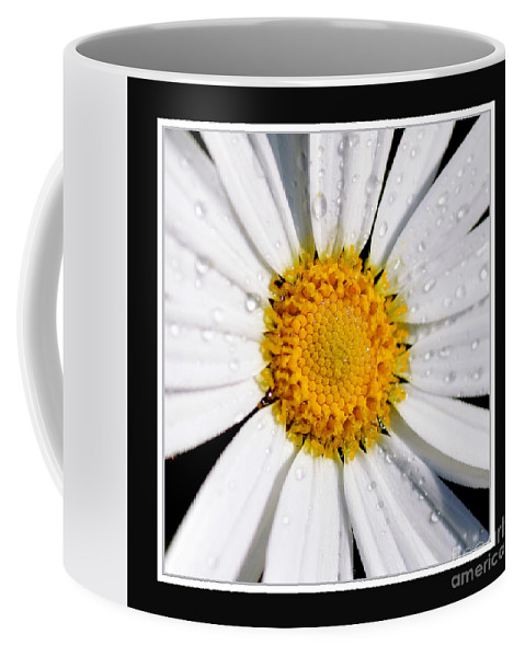 Photography Coffee Mug featuring the photograph Square Daisy - Close Up 2 by Kaye Menner