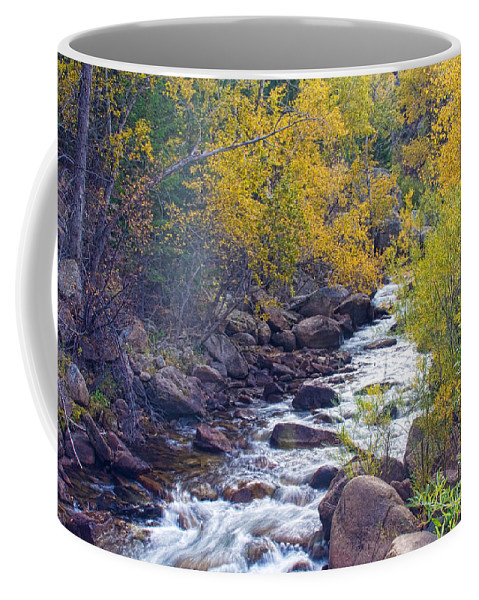 Autumn Coffee Mug featuring the photograph St Vrain Canyon And River Autumn Season Boulder County Colorado by James BO Insogna