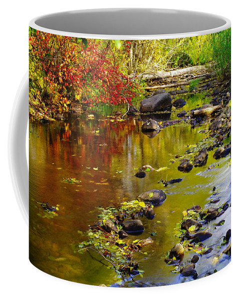 Autumn. Fall Coffee Mug featuring the photograph Still Golden Waters by Jeff Swan