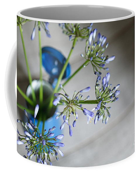 Still Coffee Mug featuring the photograph Still Life 05 by Nailia Schwarz