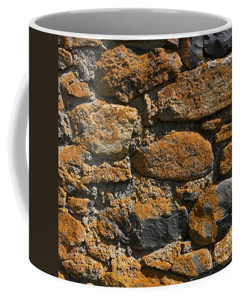 Walls Coffee Mug featuring the photograph Stone Wall by Bernard Jaubert