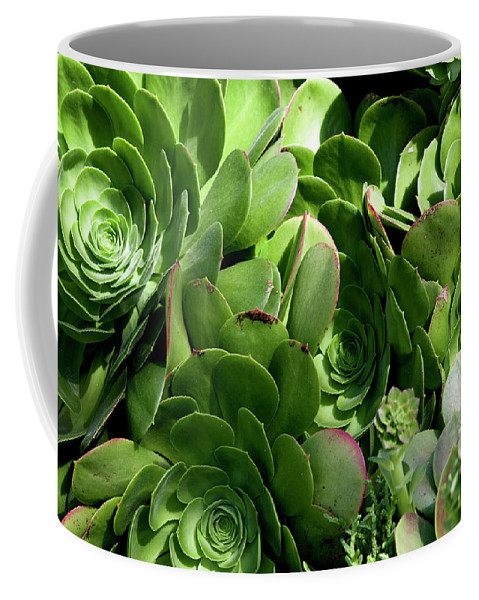 The Strand Coffee Mug featuring the photograph Strand Succulent by Lorraine Devon Wilke