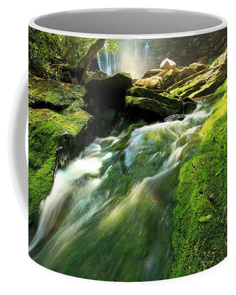 Elakala Falls Coffee Mug featuring the photograph Stream Through The Moss by Adam Jewell