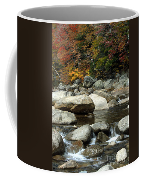 New Hampshire Coffee Mug featuring the photograph Streamside Color by Sandra Bronstein