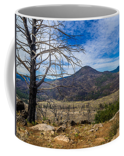Sugarloaf Peak Coffee Mug featuring the photograph Studies On Sugarloaf Peak 1 by Greg Nyquist