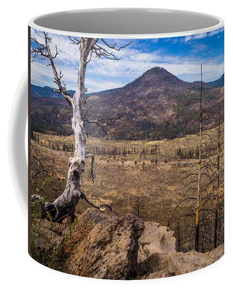 Sugarloaf Peak Coffee Mug featuring the photograph Studies On Sugarloaf Peak 3 by Greg Nyquist