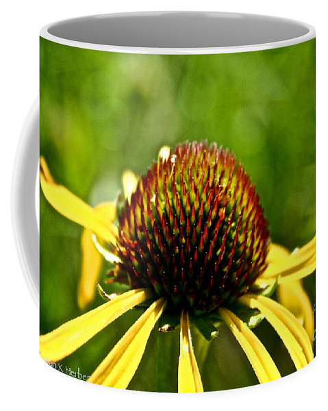 Outdoors Coffee Mug featuring the photograph Summer Pins by Susan Herber