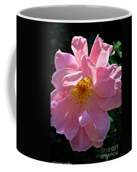 Outdoors Coffee Mug featuring the photograph Summer Waltz by Susan Herber