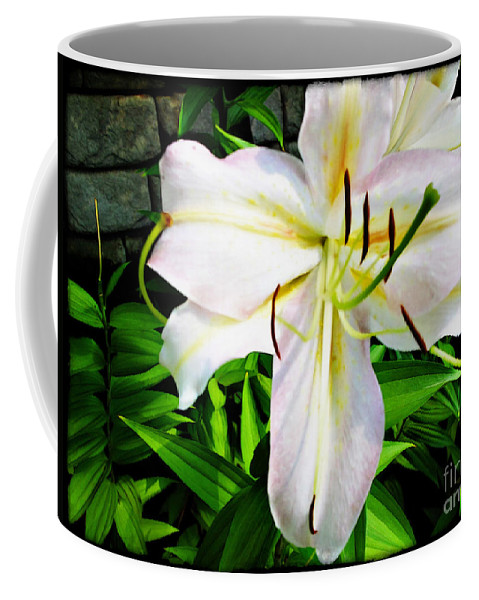 Summer Coffee Mug featuring the photograph Summer White Madonna Lily by Joan Minchak