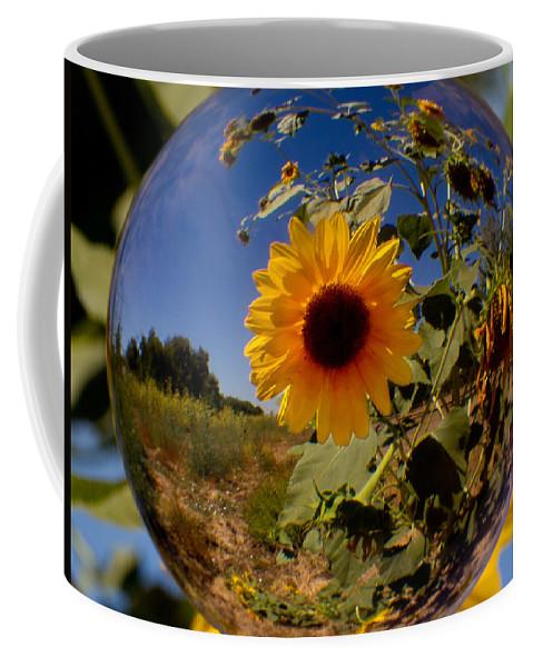 Sunflower Coffee Mug featuring the photograph Sunflower Through A Glass Eye by Robert Woodward