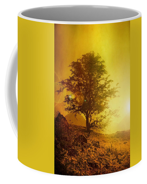 Country Coffee Mug featuring the photograph Sunrise Flare by Svetlana Sewell