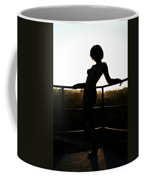 Silhouette Coffee Mug featuring the photograph Sunset At Harbor Park by BBR Studios