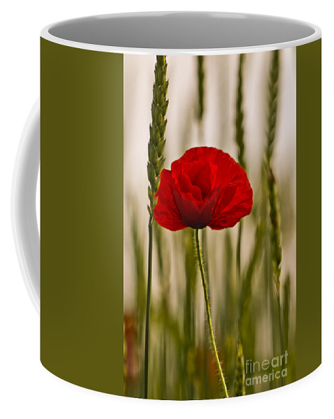 Poppy Coffee Mug featuring the photograph Sunset Glow. by Clare Bambers