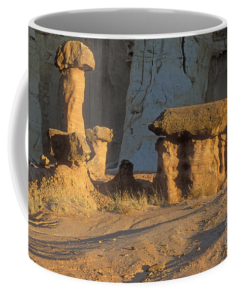 Bronstein Coffee Mug featuring the photograph Sunset In Paria Canyon Wilderness by Sandra Bronstein