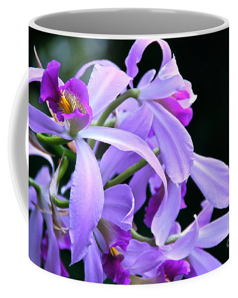 Orchid Coffee Mug featuring the photograph Super Orchid by Byron Varvarigos