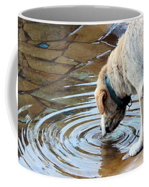 Dog Coffee Mug featuring the photograph Sure Is Good On A Hot Day by Kathy White
