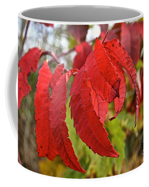 Landscape Coffee Mug featuring the photograph Surreal Sumac by Susan Herber