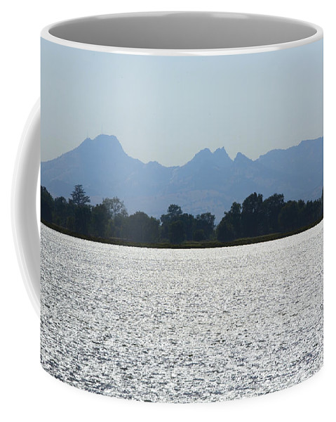 Buttes Coffee Mug featuring the photograph Sutter Buttes And Flooded Rice Field by Mark Greenberg