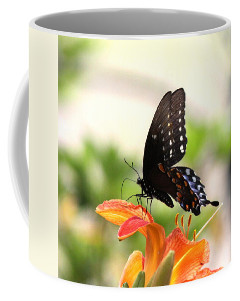 Swallowtail Butterfly Coffee Mug featuring the photograph Swallowtail - Lite And Lively by Travis Truelove