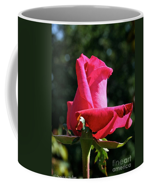 Outdoors Coffee Mug featuring the photograph Swarthmore by Susan Herber