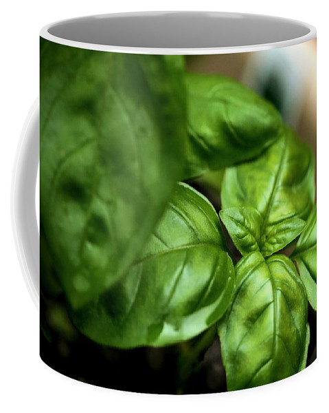 Basil Coffee Mug featuring the photograph Sweet Basil From The Garden by Angela Rath