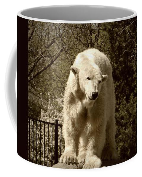 Zoo Coffee Mug featuring the photograph Sweetness by Brenda Conrad