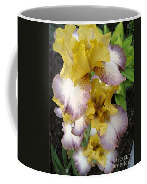 Bearded Iris Coffee Mug featuring the photograph Tall Bearded Iris Named Butterfingers by J McCombie