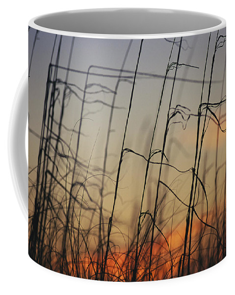 United States Of America Coffee Mug featuring the photograph Tall Grasses Blowing In The Wind by Raymond Gehman