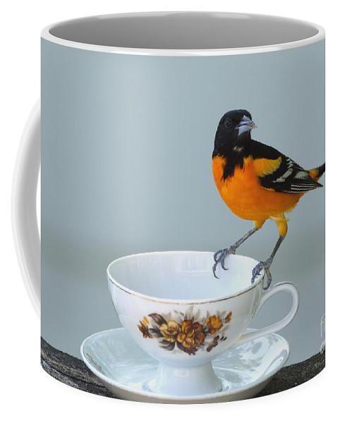 Oriole Coffee Mug featuring the photograph Tea Please by Lori Tordsen